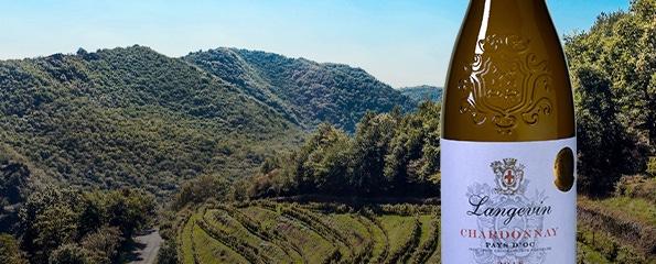 Gouden Chardonnay uit Languedoc