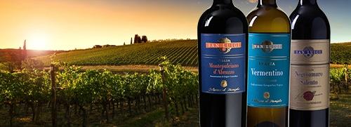 San luigi wijngaard