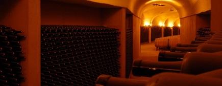 LA Cetto Wijnkelder
