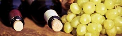 Wijn uit Rueda