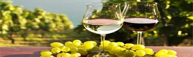 Wijn uit Utiel Requeña